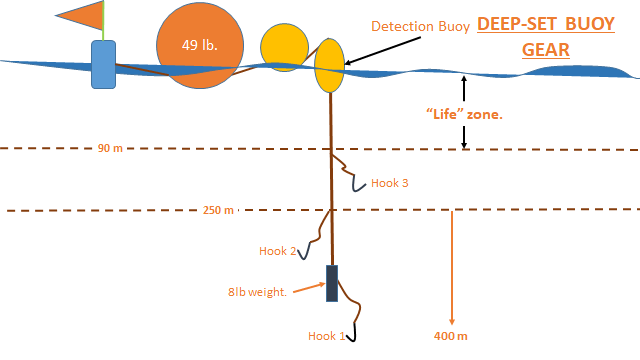 Deep Set Buoy Gear