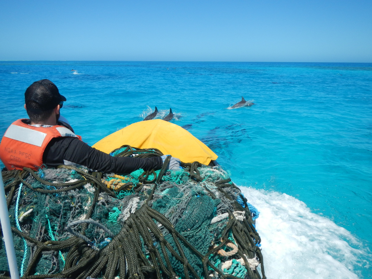 A group of Spinner Dolphins escorted the Marine Debris team during their 21 kilometer transit through the interior of Pearl and Hermes Atoll back to the NOAA Ship Hi'ialakai.  On May 3, 2016 the team completed operations at Pearl and Hermes after removing 2,100 lbs of derelict fishing nets from the shoreline of Southeast Island. Photo: NOAA Fisheries