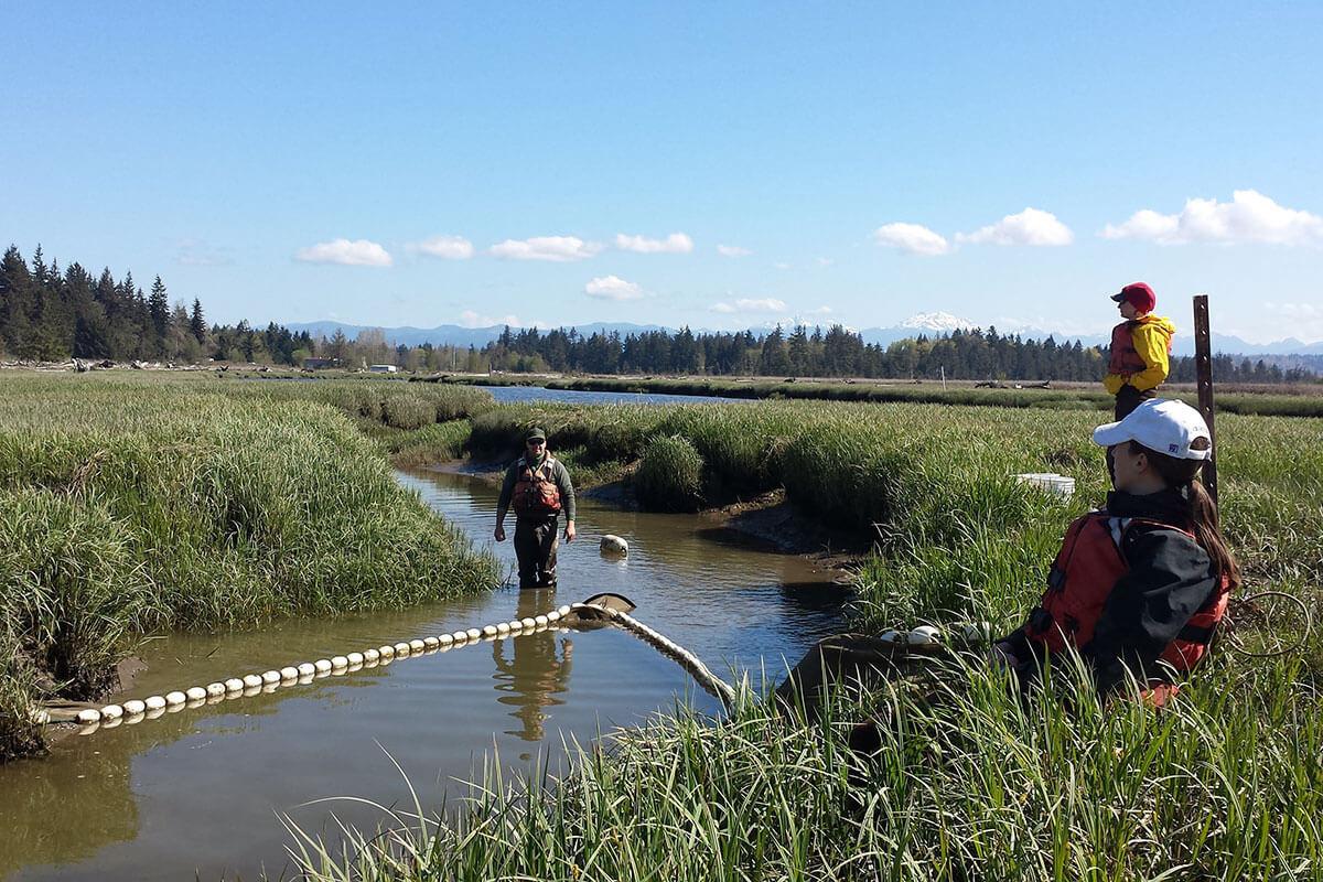 Scientists doing estuary field work