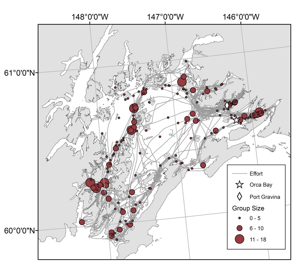 Dalls Porpoise Foraging Survey Map.