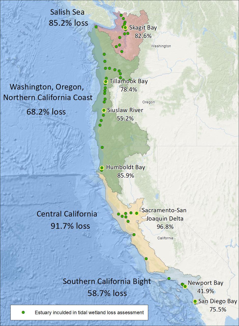 estuary-losses-on-west-coast.jpg