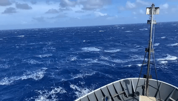 """Strong winter winds can make for challenging survey conditions. This day was particularly rough, with sustained winds over 30 kt. In conditions like this, the mammal observers go on """"weather watch,"""" where a single observer watches to see if conditions improve. Video: NOAA Fisheries/Allan Ligon."""