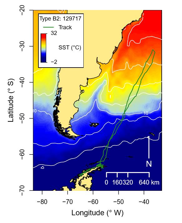 Pitman et al_B2 killer whale track_2020.PNG