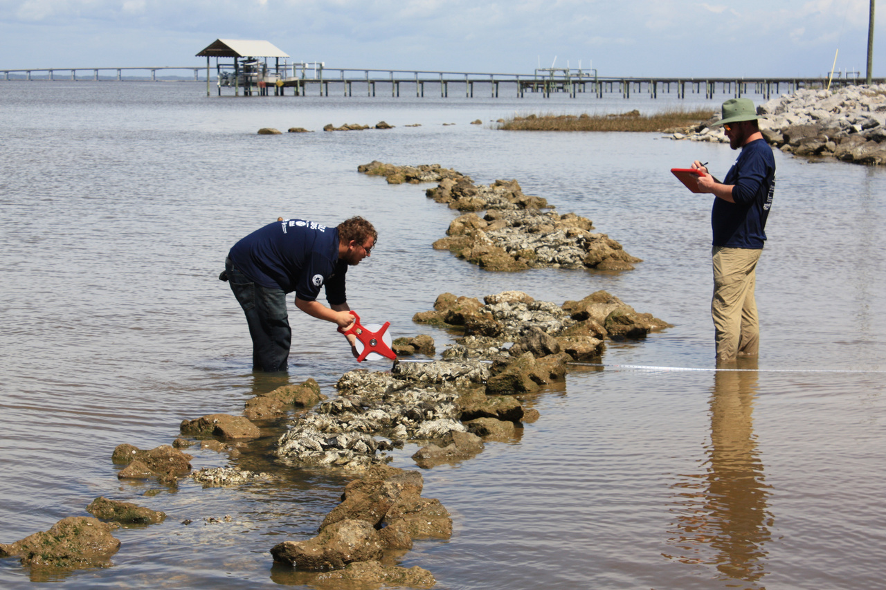 750x500-2020-03-GulfCorps-FL-monitoring-restored-oyster-reef.jpg