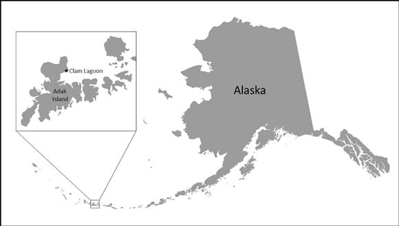 Aleutian Islands Study Area