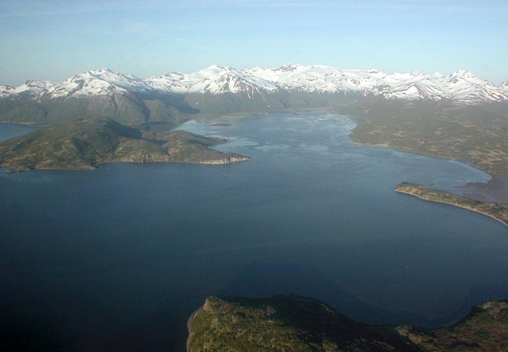 Mallard Duck Bay, Image Credit: Greg Ruggerone, Natural Resources Consultants, Inc.