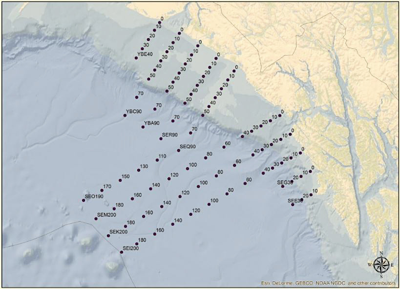 Gulf of Alaska Assessment survey planned stations, same stations that were sampled during 2016, including the offshore age-0 sablefish sampling grid.