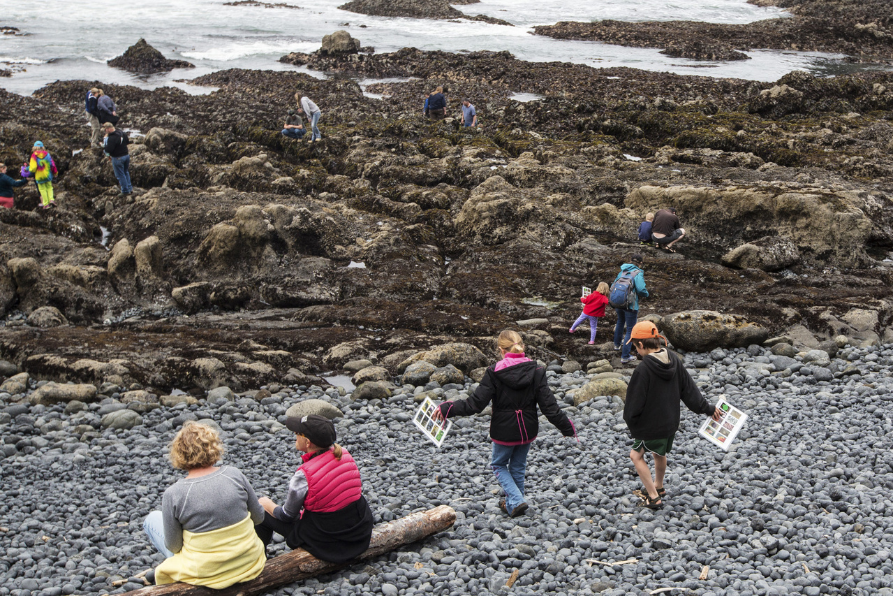 Families Tide Pools Yaquina Head Outstanding Natural Area OR 1906x1271 image BLM.jpg
