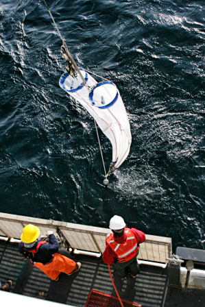 Sampling with bongo nets in Arctic/Chukchi Sea