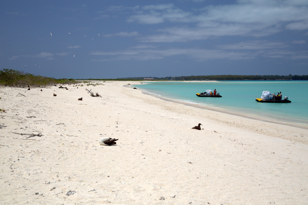 On April 19, 2016, the team removed debris from the western tip of Eastern Island. The shoreline was cleaned and both boats were fully loaded. Photo: NOAA Fisheries/Ryan Tabata