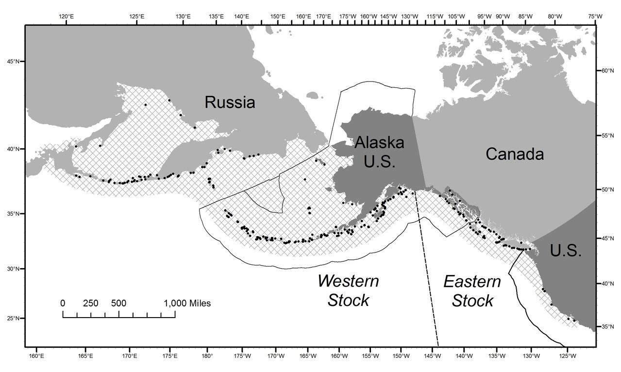 Steller Sea Lion research map
