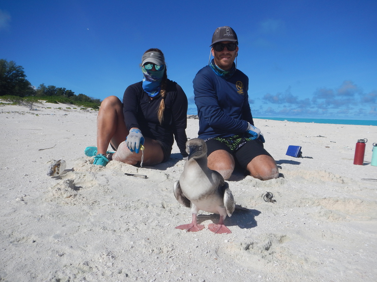 Team members with the freed booby bird.