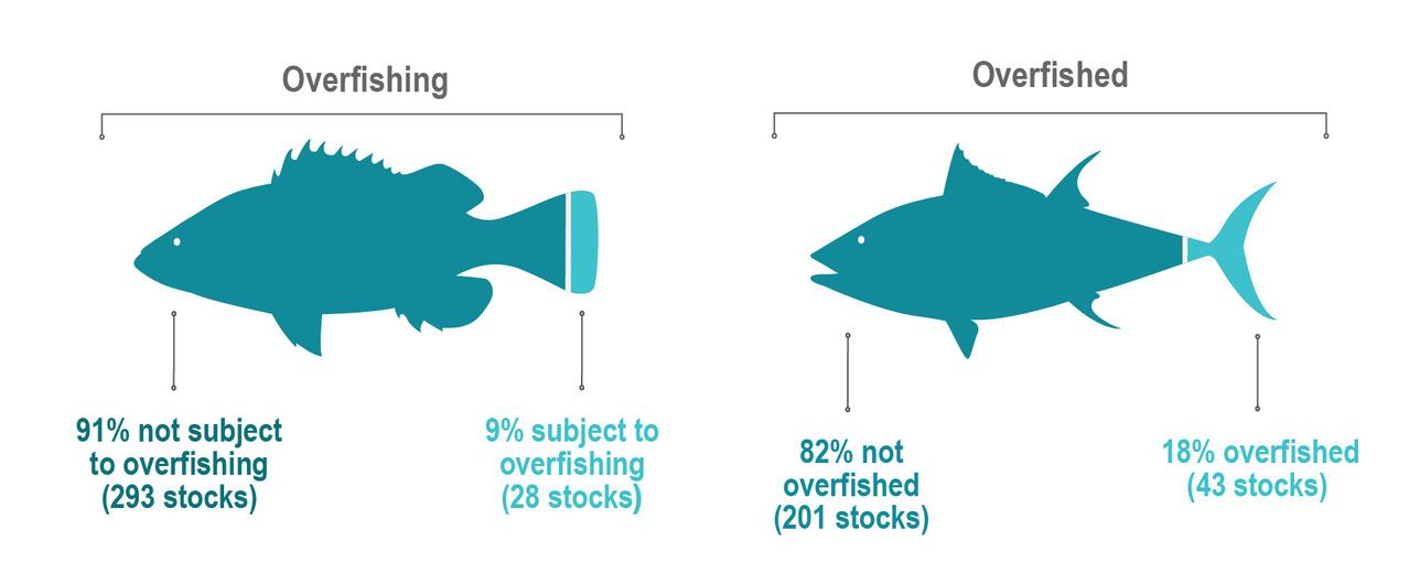 GRAPHIC - Status of Stocks 2018 Report.jpg
