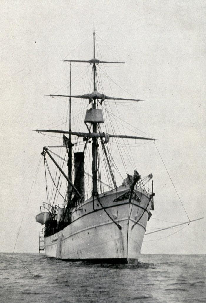 albatross-1-bow.jpg