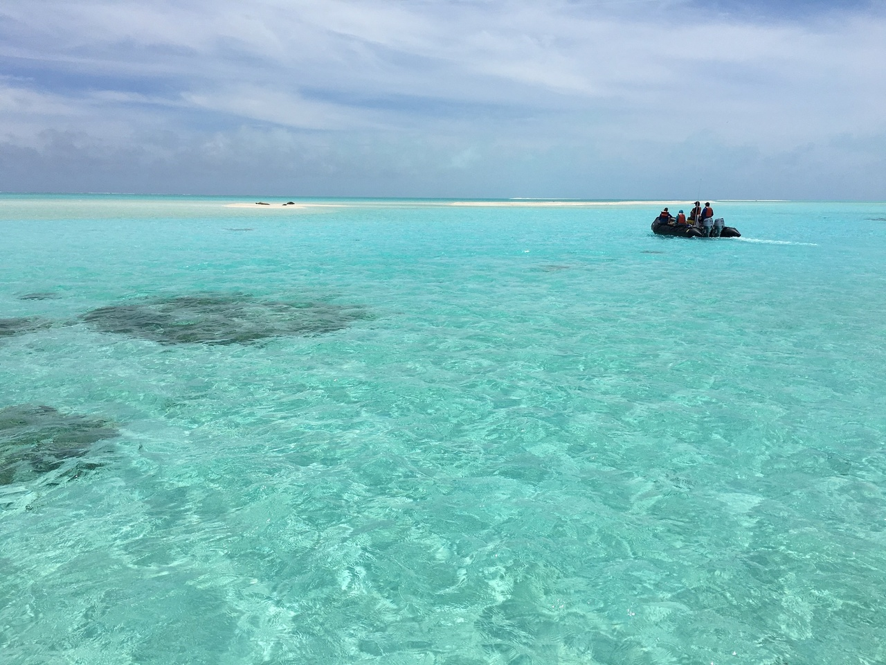 A small boat heads to North Island at Pearl and Hermes Reef to check for rehab candidates.