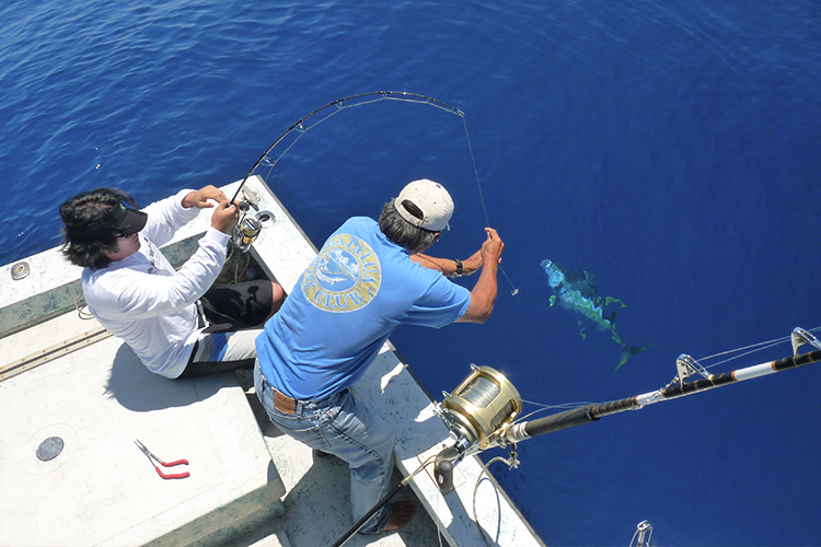 750x500-recreational-fishing-hawaii-NOAA-PIRO.jpg