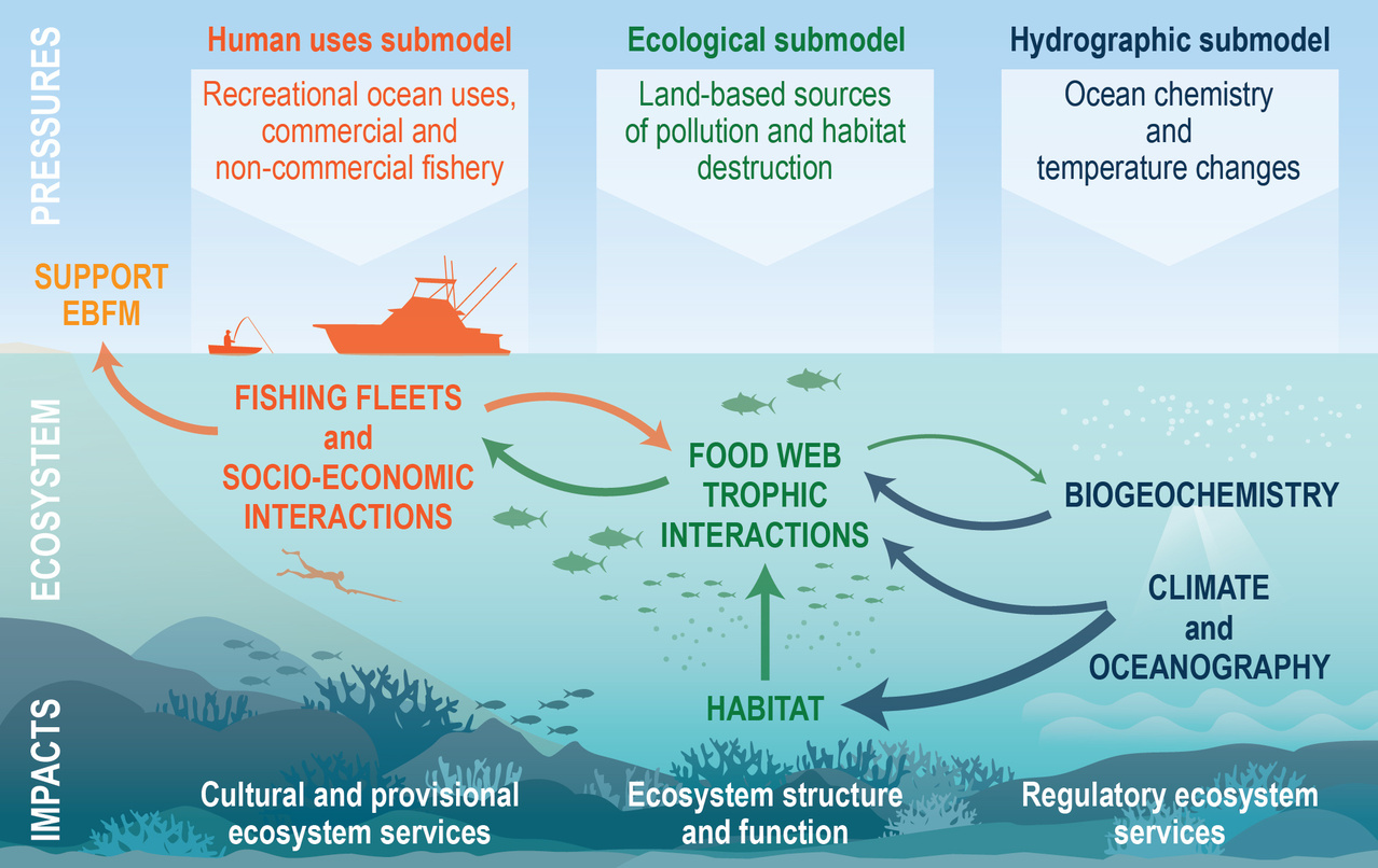 Components of the Atlantis Ecosystem Model for Hawaii