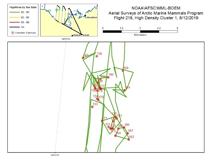 This map depicts a CAPs survey through an area of high-density bowhead sightings.
