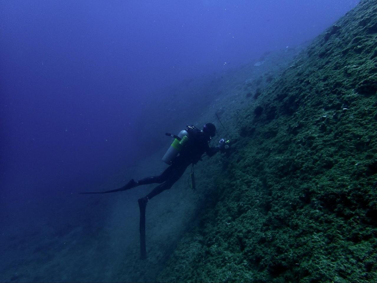 Researcher installs recorder under water.