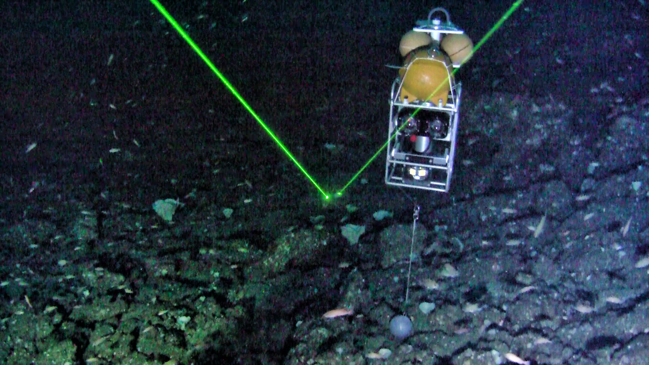 Untrawlable Habitat, Image Credit: Tom Laidig, NOAA