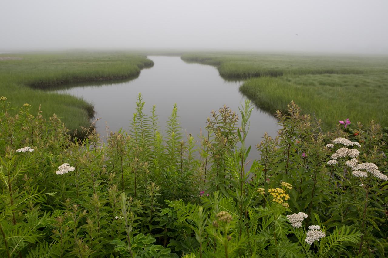 Morning mist in Hampton Beach, New Hampshire.