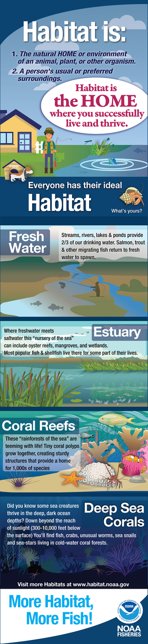 """Infographic - """"What is Habitat"""" - provides basic information on fresh water, estuary, coral reef and deep sea coral habitats."""