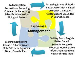 fisheries_management_puzzle.jpg