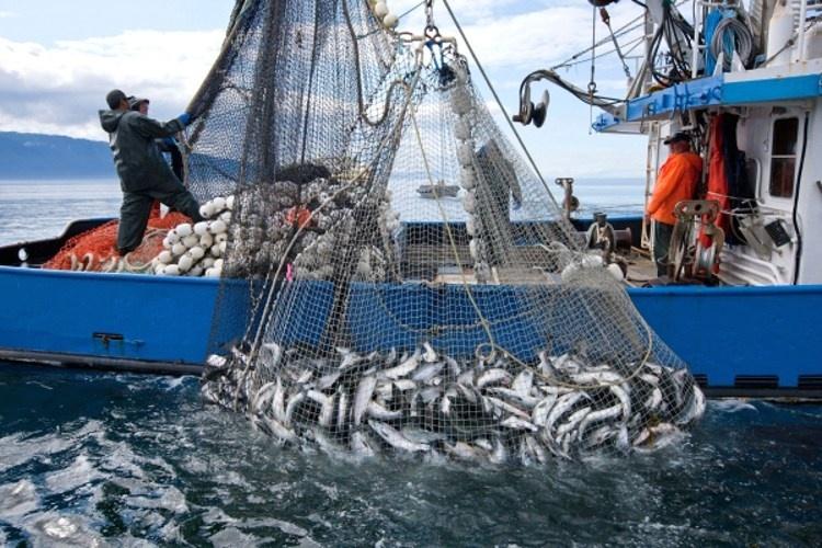 Fishing-the-Pacific-Ocean.jpg