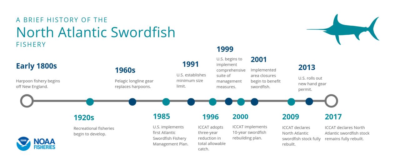 North Atlantic Swordfish.png