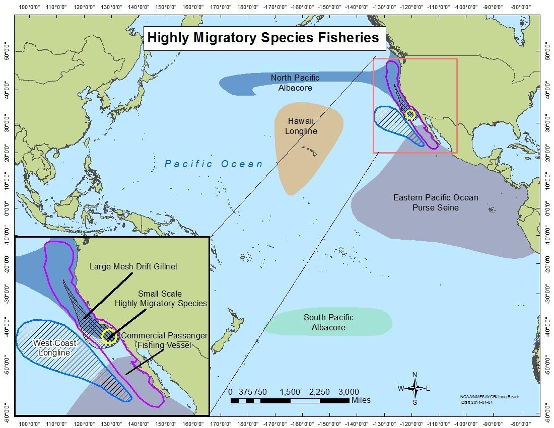 Highly Migratory Species Fisheries