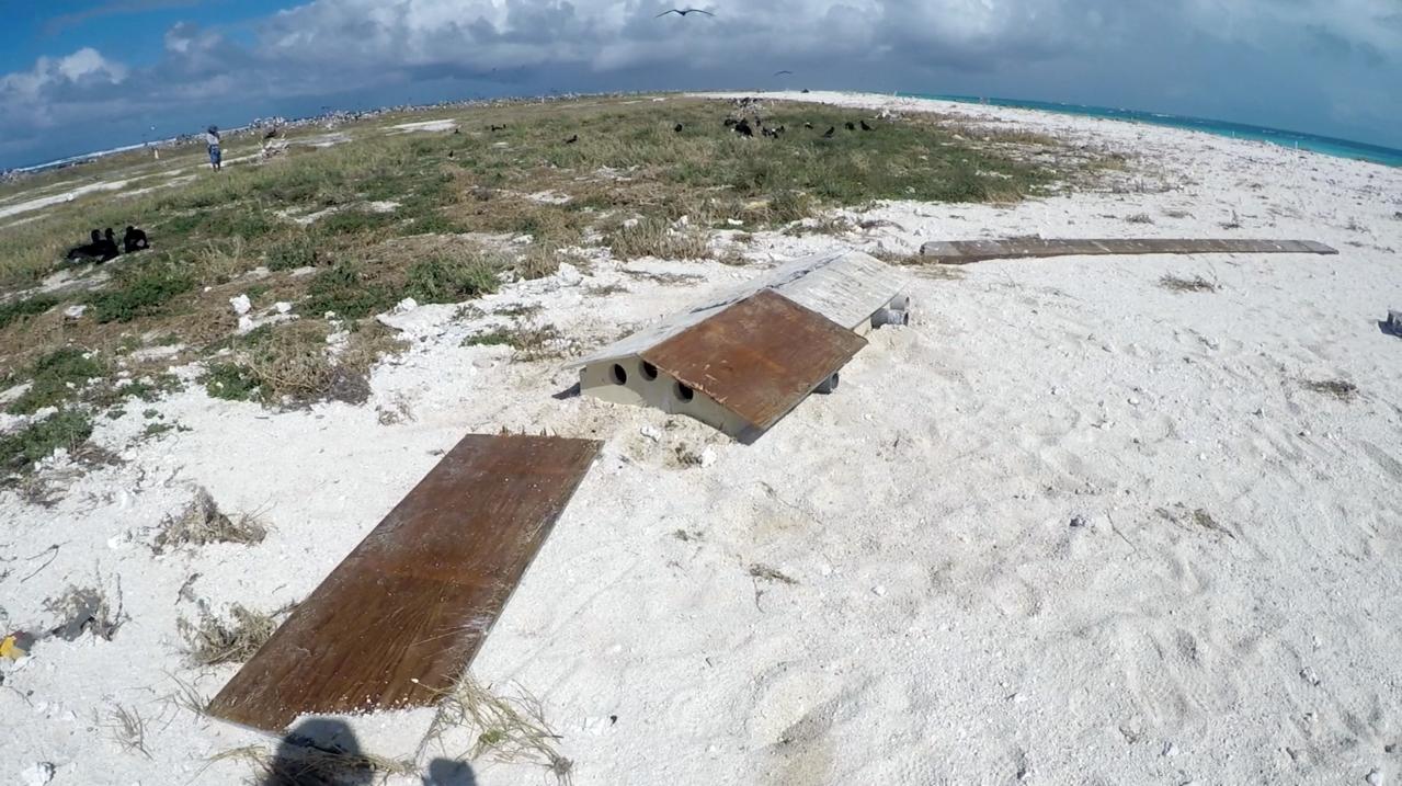 Endangered Tristam's storm petrel and bonin petrel bird shelters at Tern Island