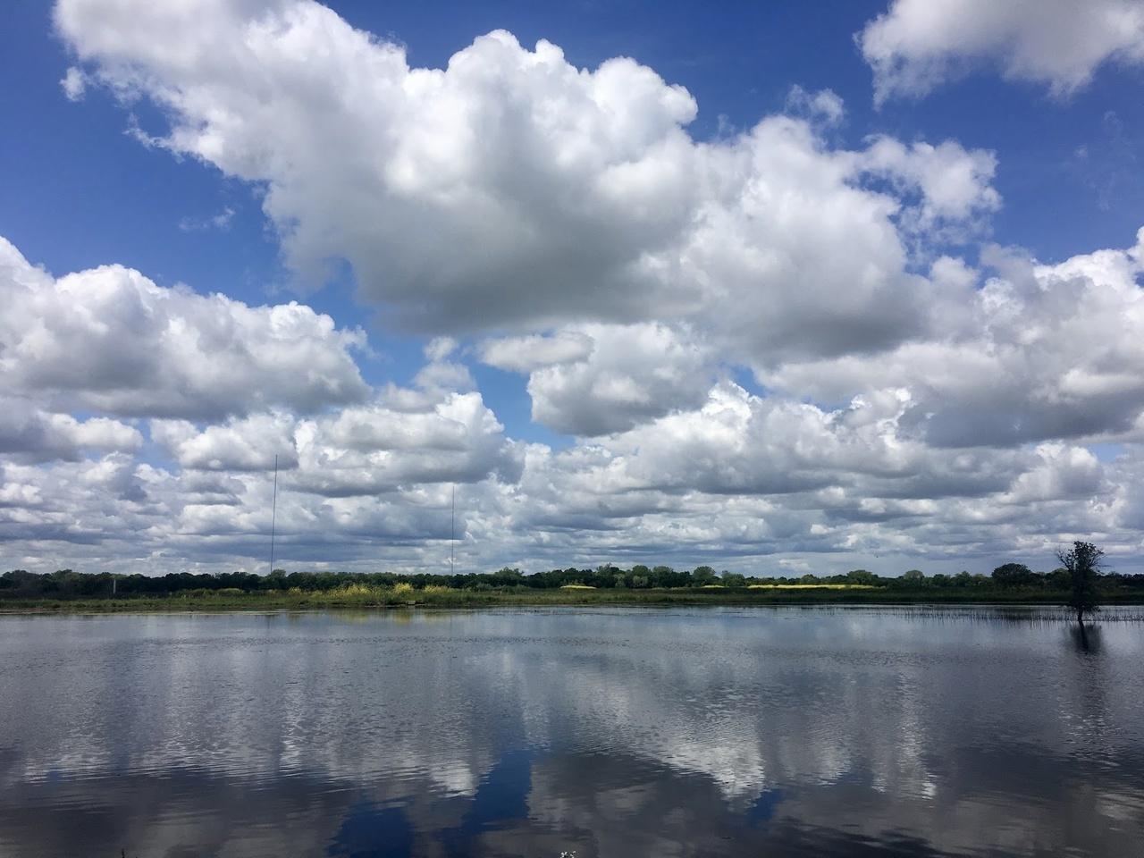 Cosumnes River watershed