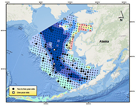 Pacific_Cod-map.jpg