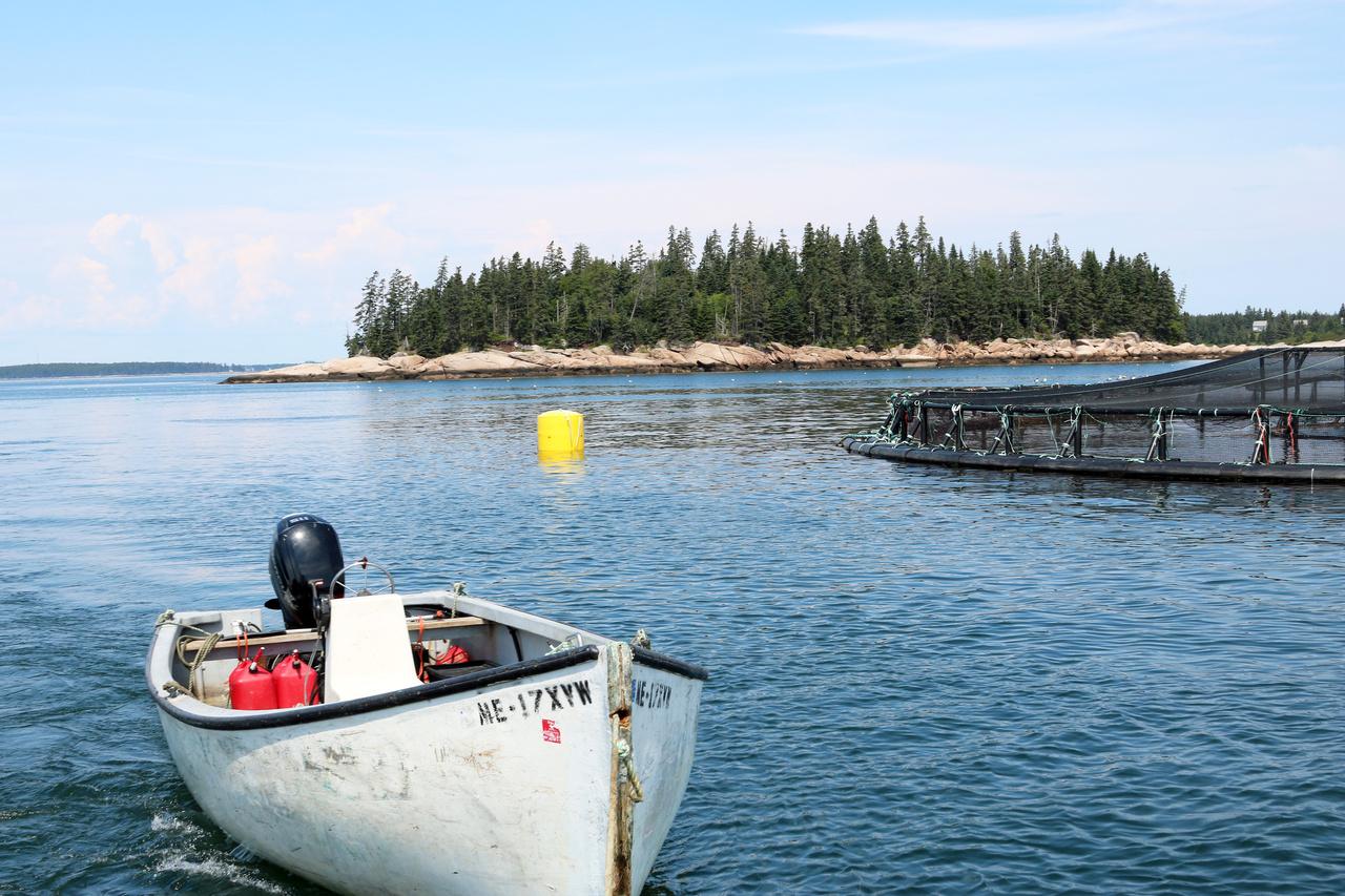 Aquaculture net pen.