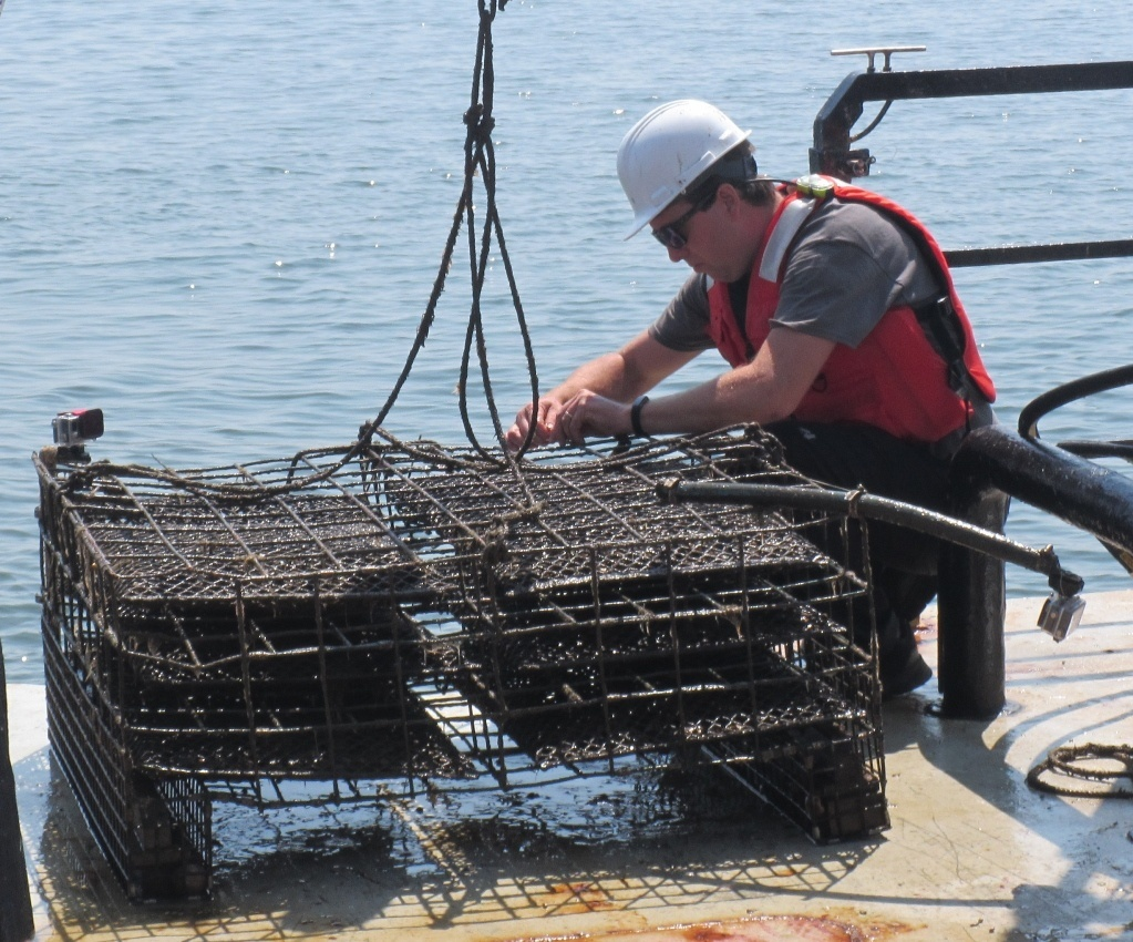 tech putting gopro cameras on oyster cage