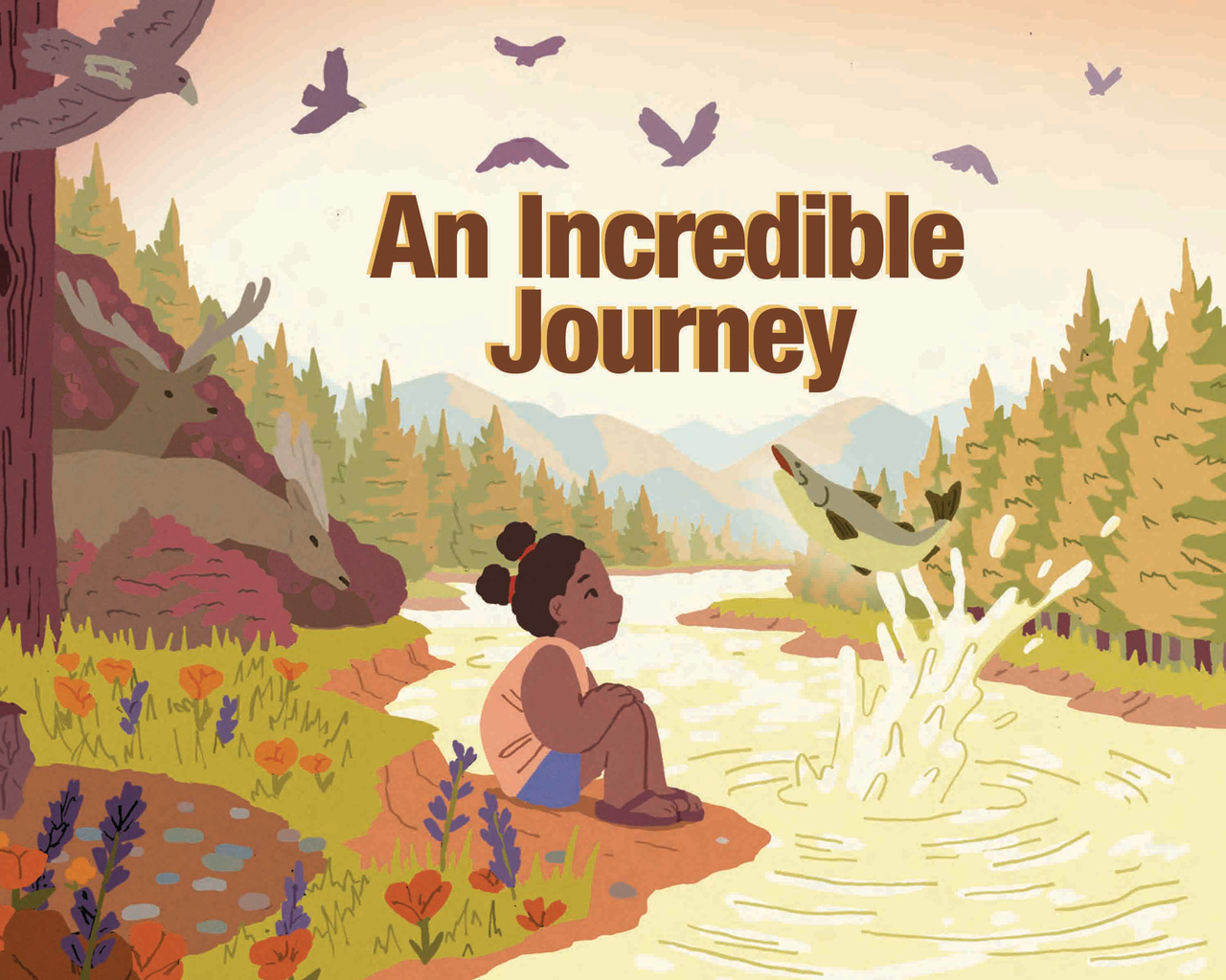 Cover image for An Incredible Journey