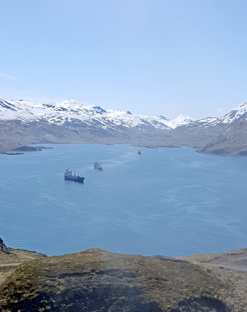 Dutch Harbor, Alaska, Facing South.