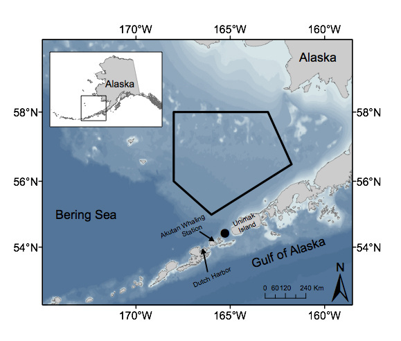 Southeast Bering Sea and Aleutian Island Chain. The black line demarcates the Southeast Bering Sea North Pacific right whale Critical Habitat. The black circle marks the location of the long-term passive acoustic recorder in Unimak Pass.