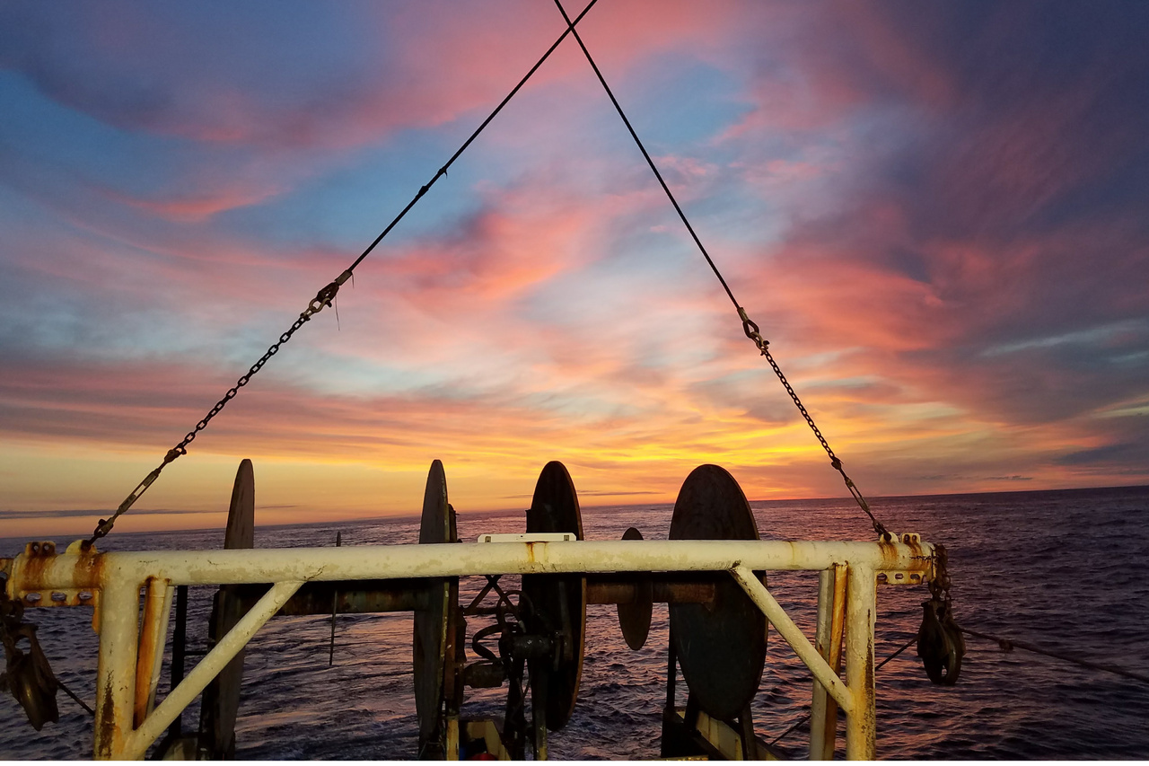 scallop-sunset-zf.jpg