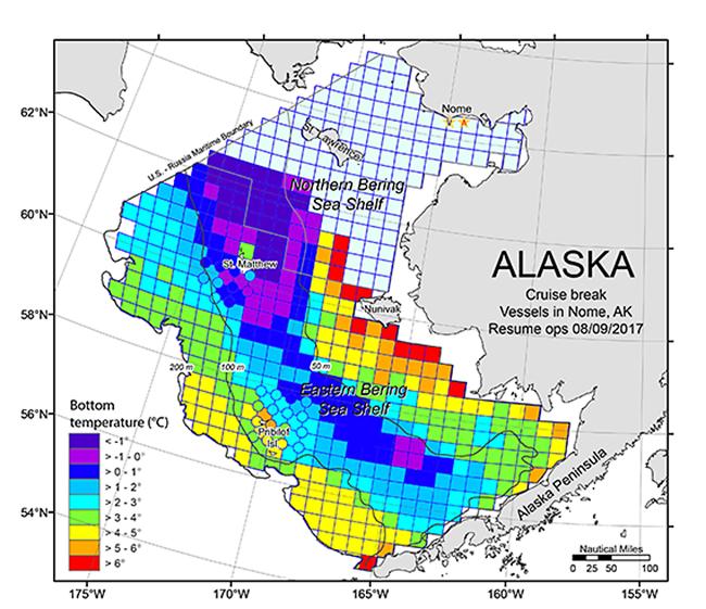 Eastern Bering Sea Survey Graph