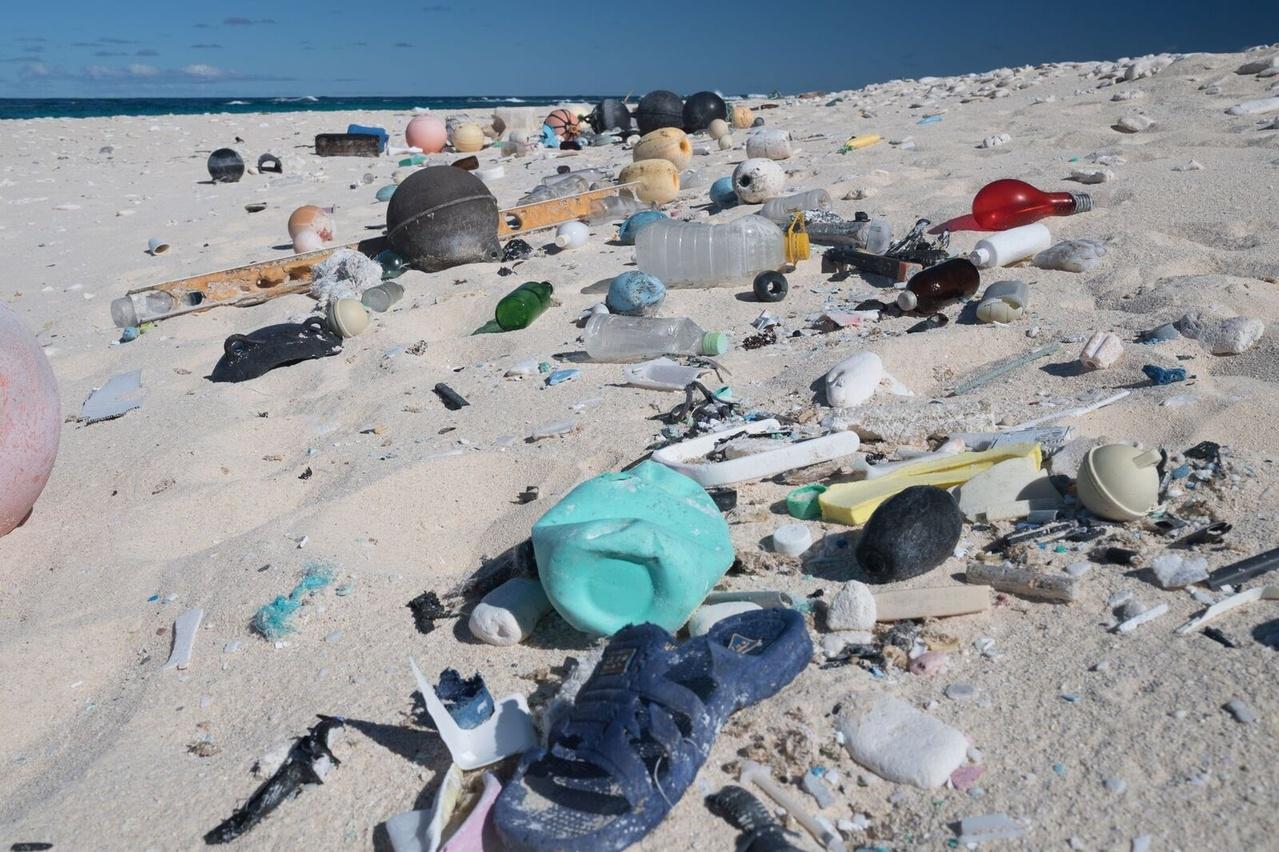 Plastic debris litters the shoreline