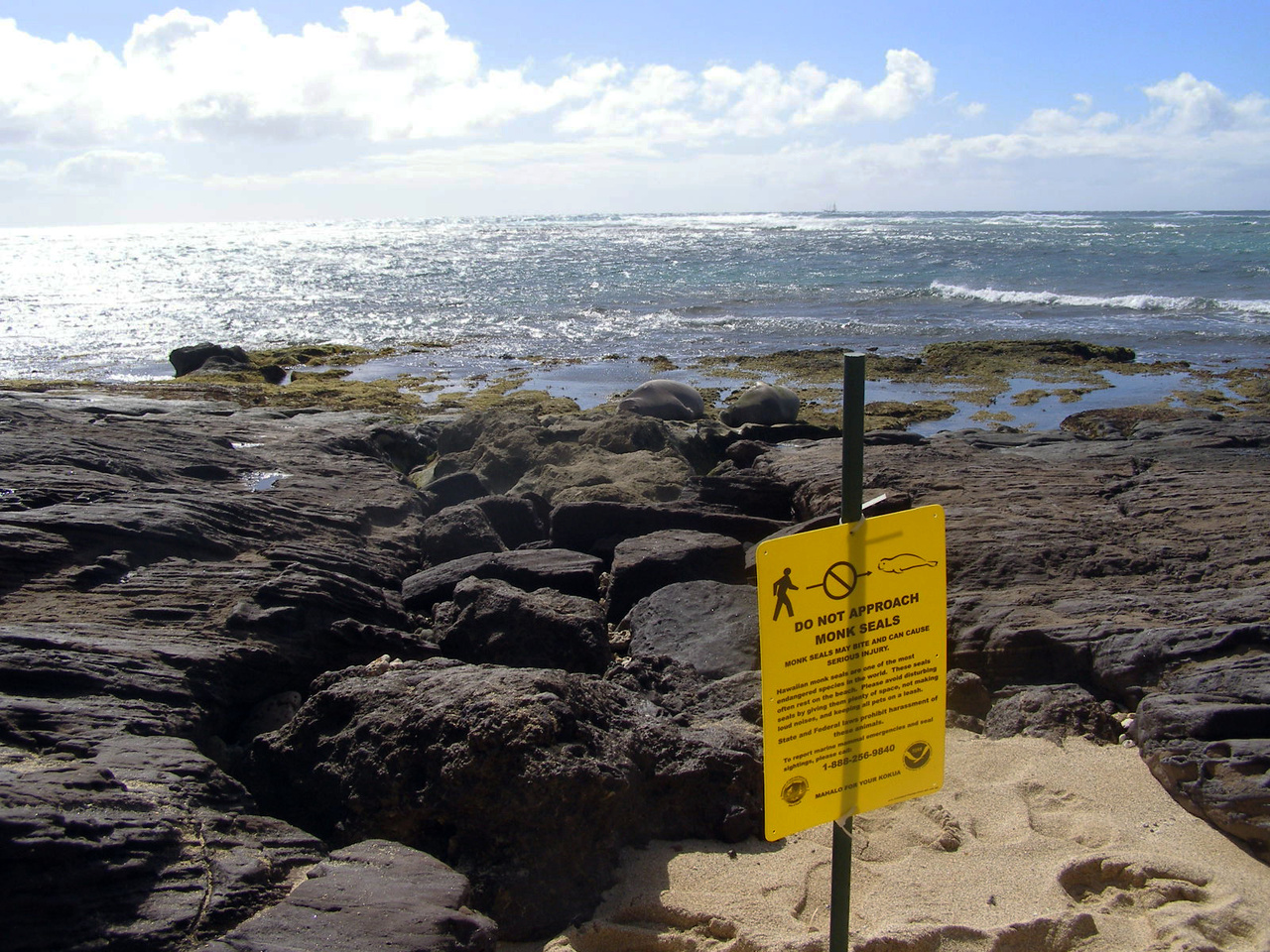 Caution sign to protect monk seals