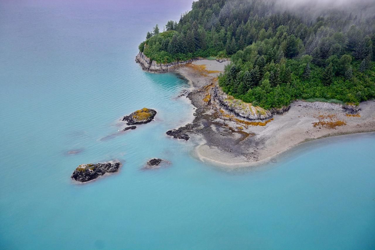 Aerial ShoreZone image taken July 15, 2018 of Pt. McLeod, Muir Inlet, Glacier Bay National Park & Preserve.