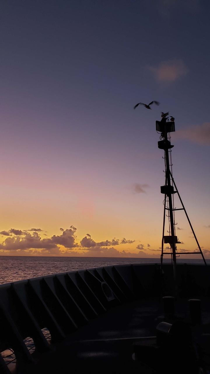 2268x4032-Sunrise FFS.jpg