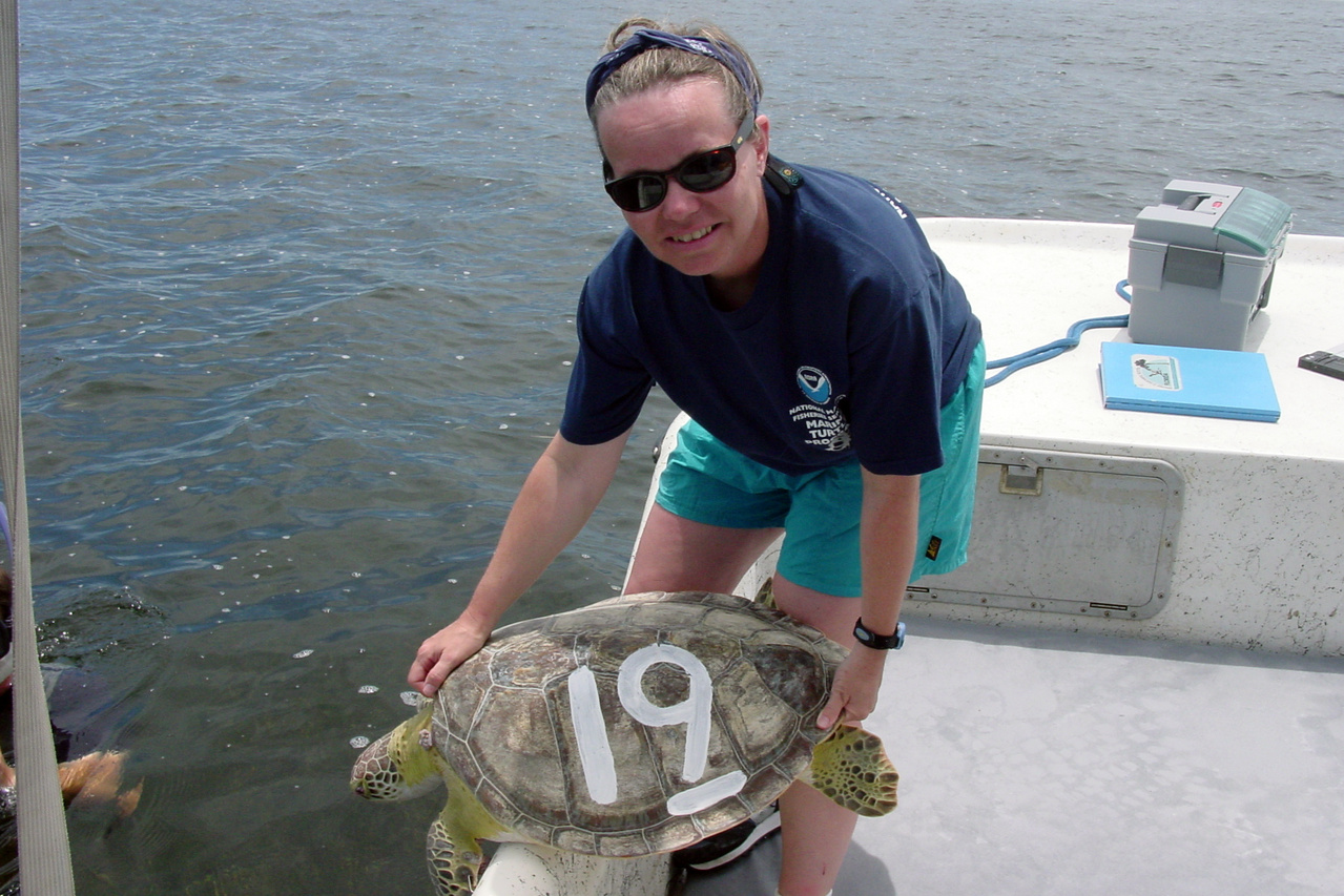 Barbara Schroeder holding a Florida Bay sea turtle