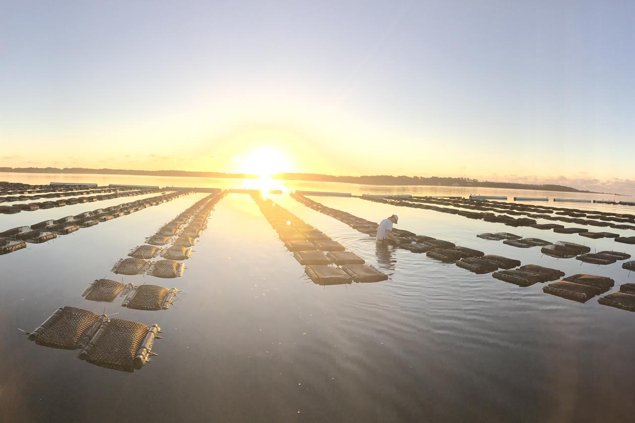 aquaculture_week_feature.jpg