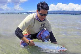Hawaii Fisheries Extension Agent holding a Hawaiian bonefish (Oio).
