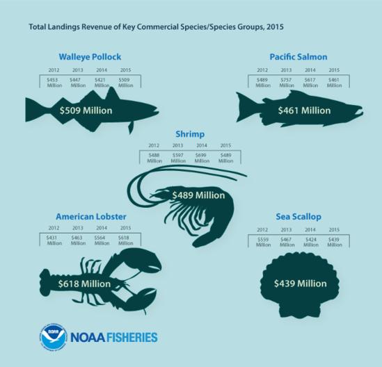 FEUS2015_Infographic_KeySpecies.png