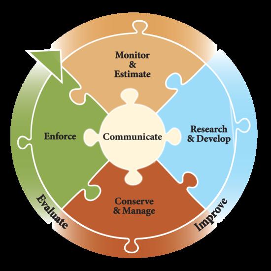 Strategy objectives