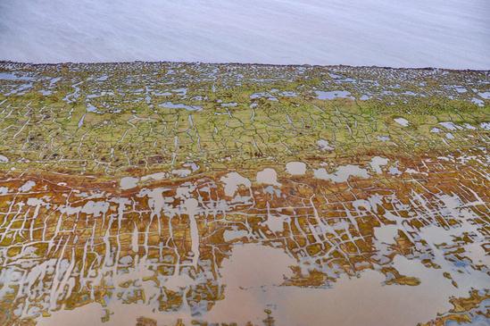 A tundra surface